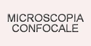 microscopia confocale