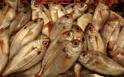 Vendita pesce al dettaglio