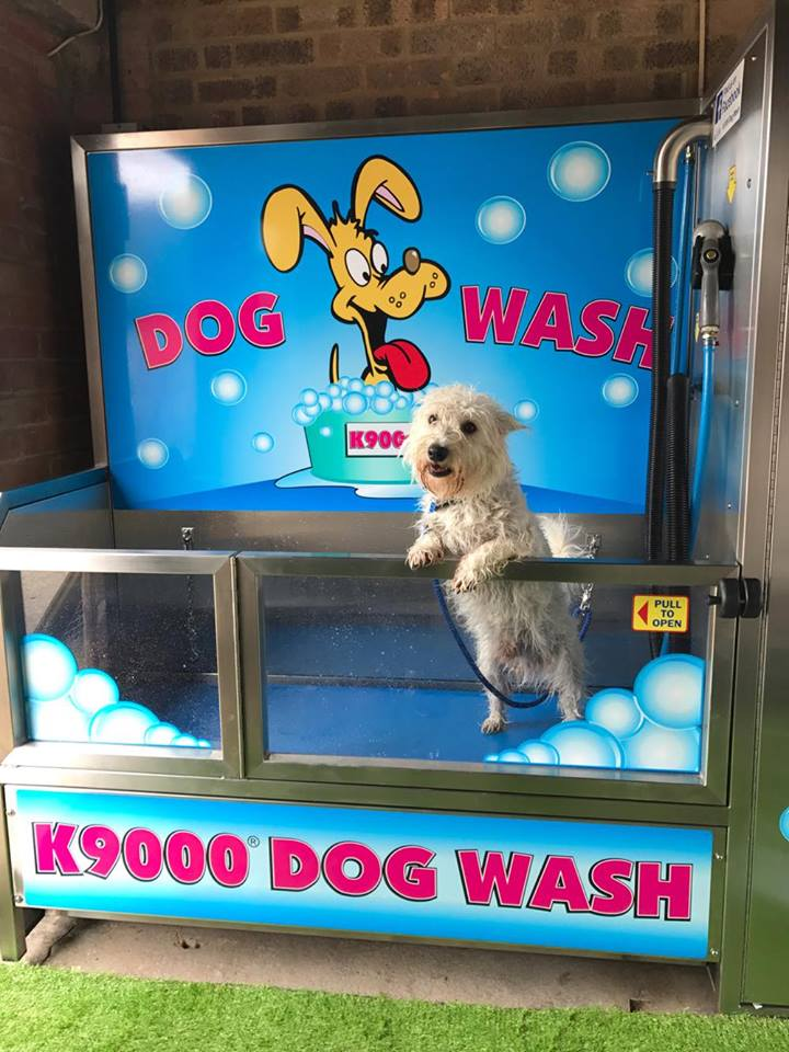 Do it your self dog wash self grooming service