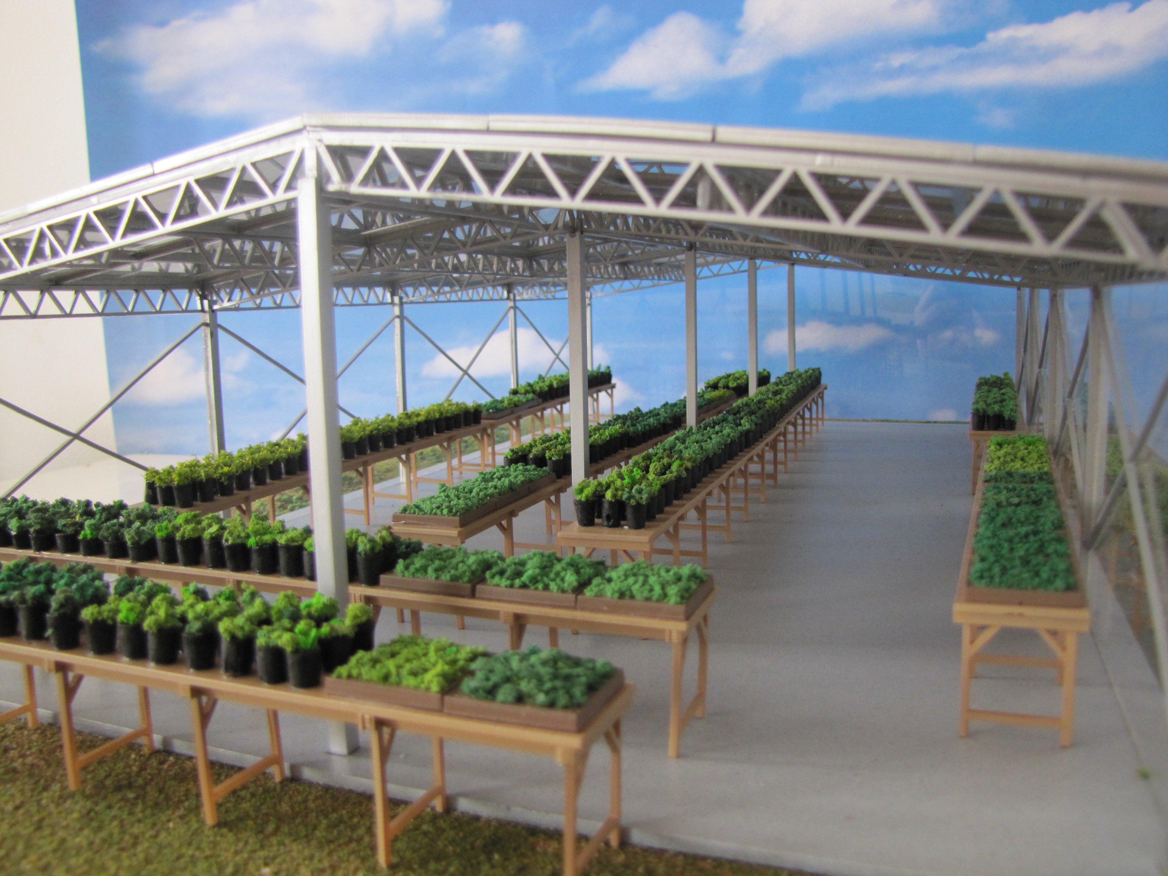 Diorama serra con piante