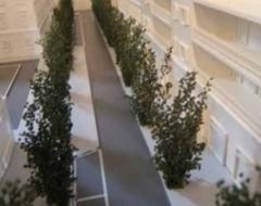 planivolumetria architettonica
