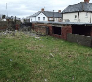 Overgrown outdoor space