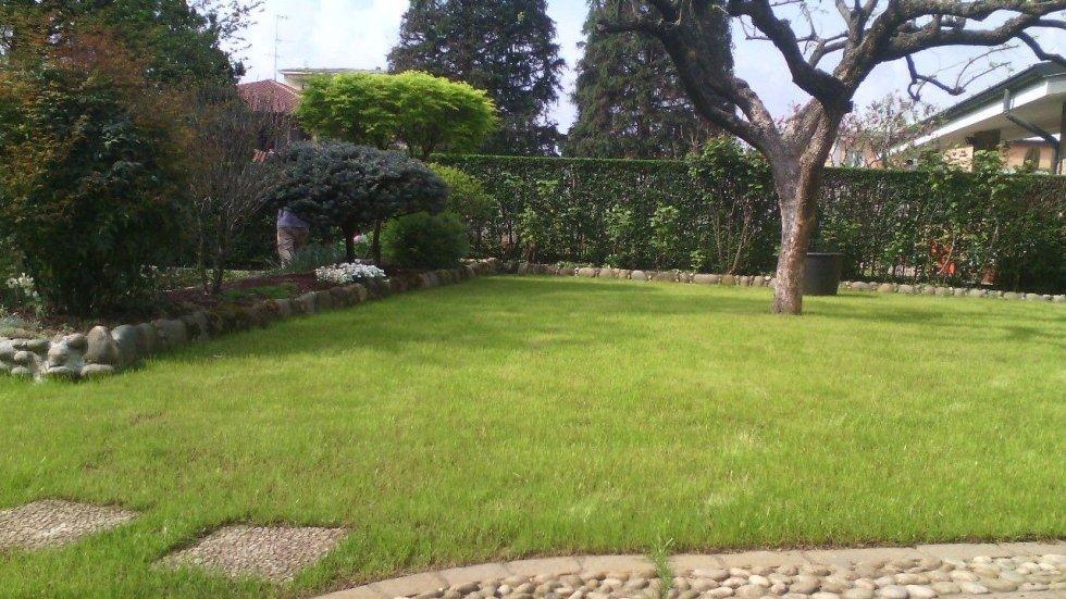 giardini con alberi