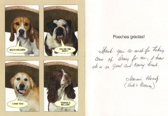 Private Pet Cremation Pet ID Tags