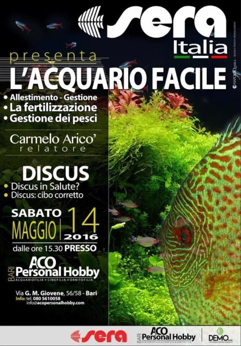 evento acquario facile
