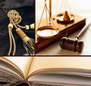 •Affidamento, annullamento di matrimonio, arbitrati, assistenza contrattuale, assistenza legale, assistenza per controversie societarie