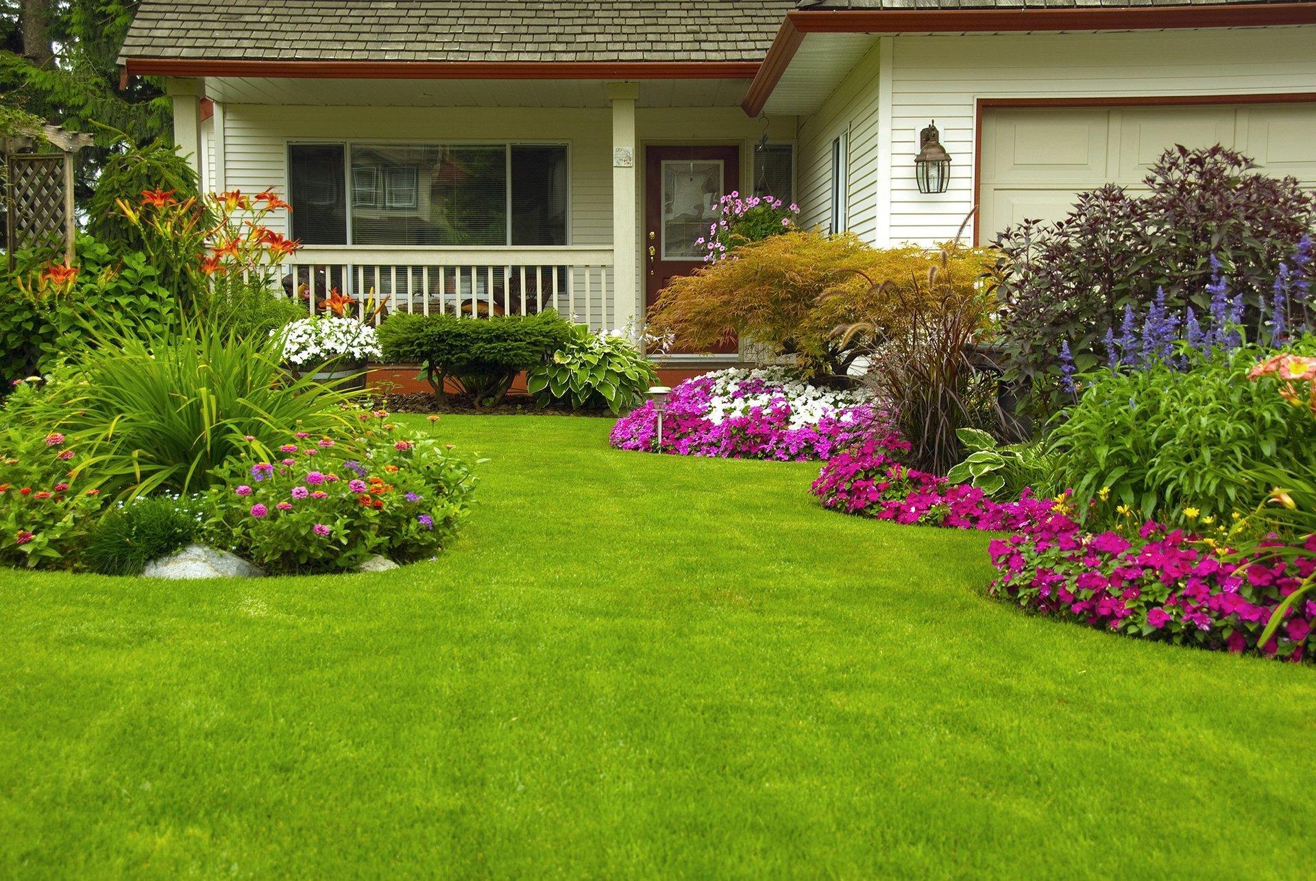 Artificial Lawn Fremont, CA
