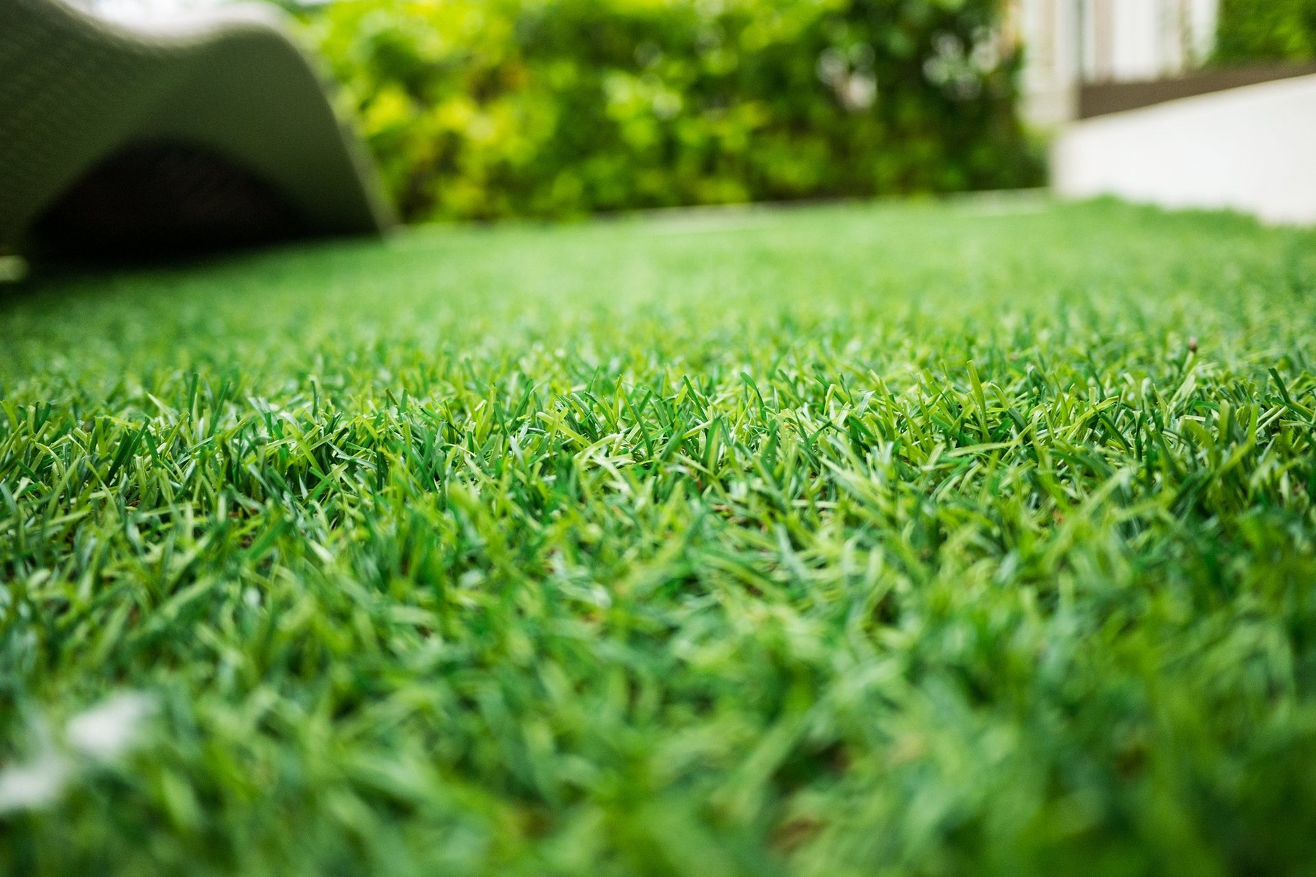 Artificial Turf Fremont, CA