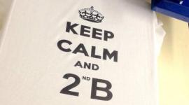 stampa magliette, stampe su magliette, stampaggio magliette