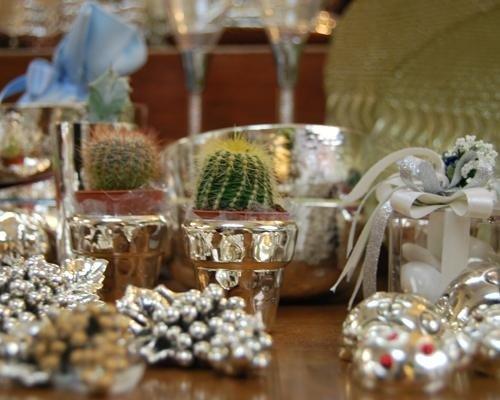 Vasetti per piantine in argento