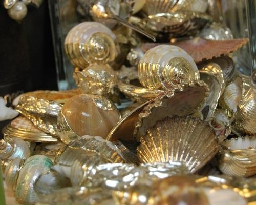 Conchiglie argento per bomboniere