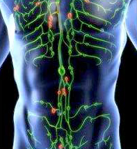 malattia linfatica