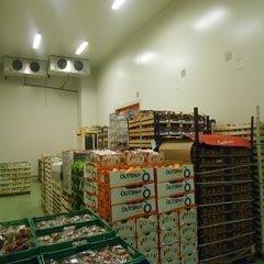 magazzinaggio prodotti ortofrutticoli