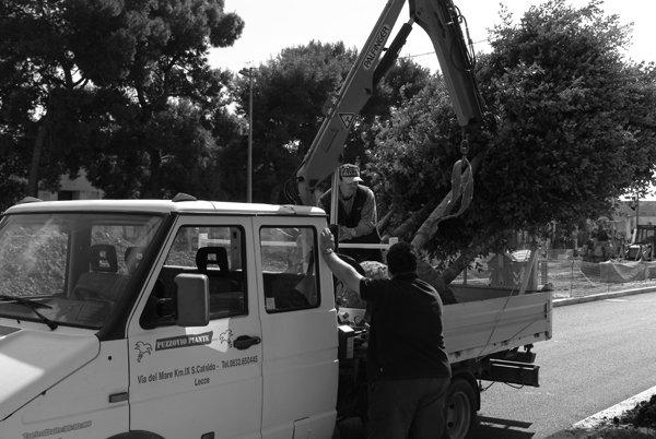 manutenzione urbana