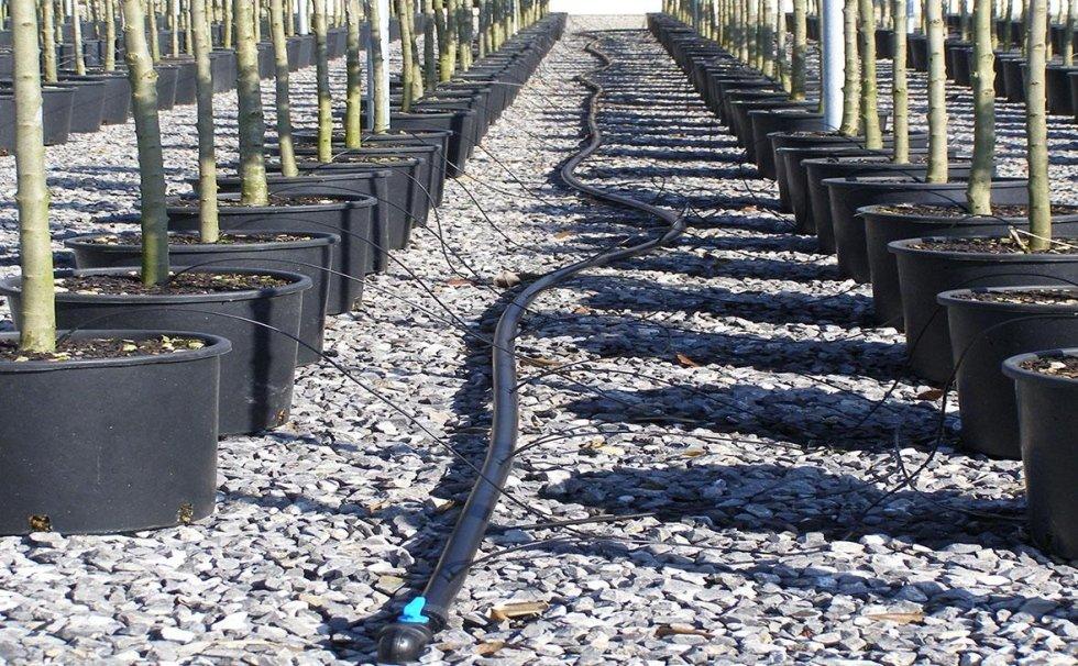 impianti di irrigazione per vivai