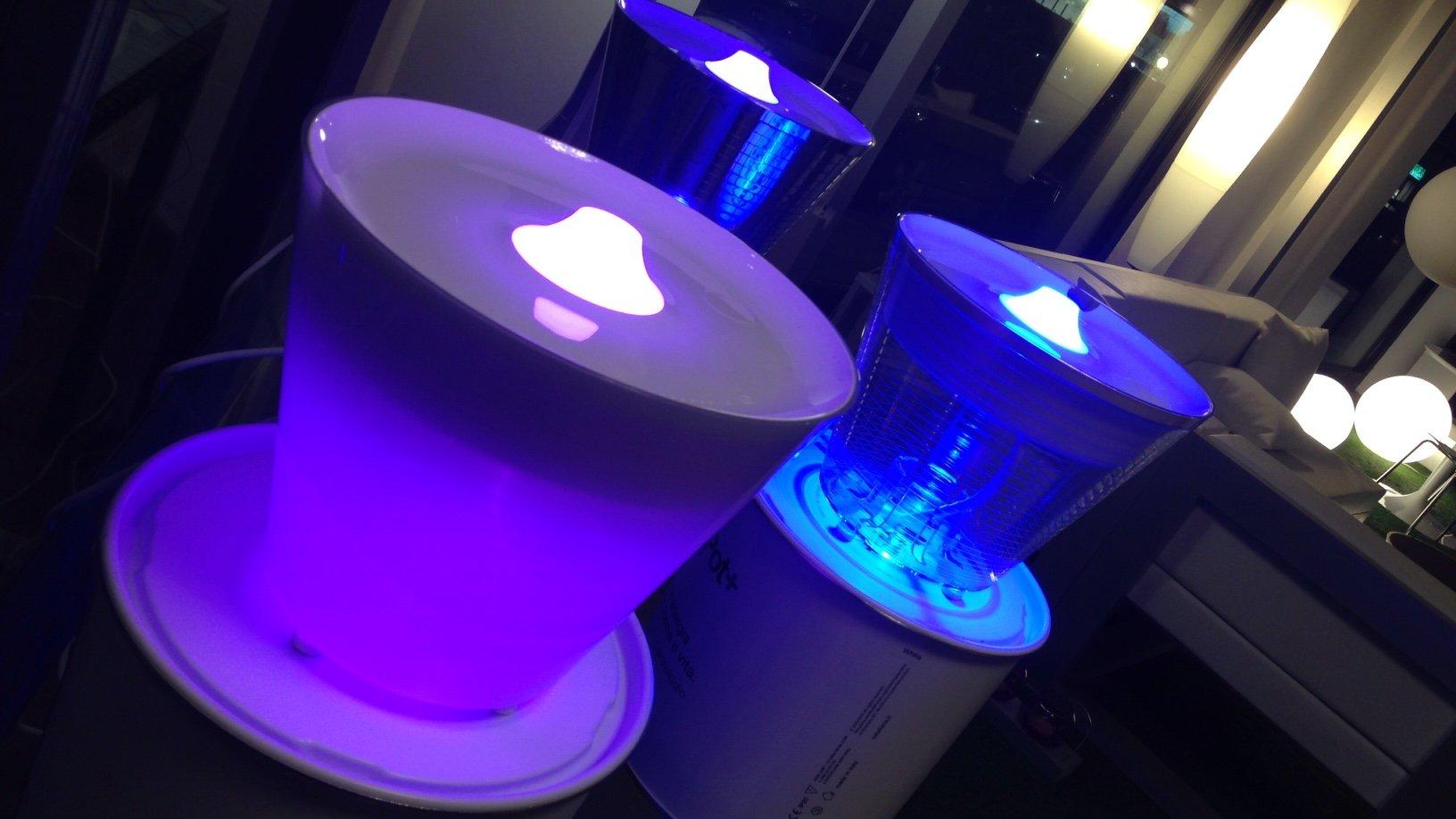 lampade a luce viola