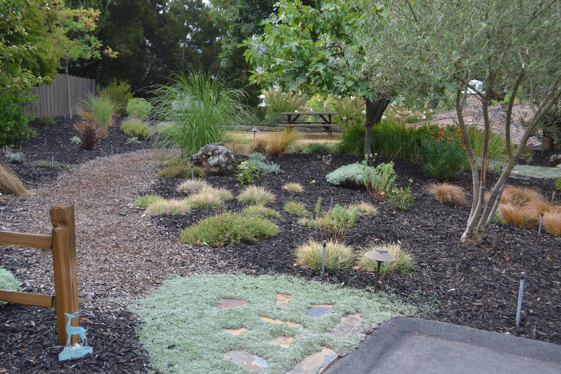 Drought Resistant Landscaping in Alamo CA - Quality Gardening \u0026 Landscaping & Drought Resistant Landscaping in Benicia Danville Alamo Orinda ...
