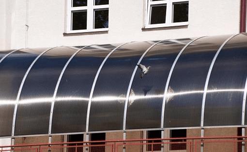 lastre policarbonato alveare curvate