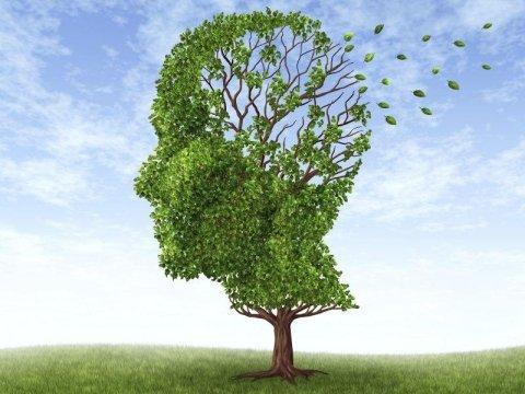 psicoterapia vicenza