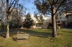 giardino con alberi e una panchina