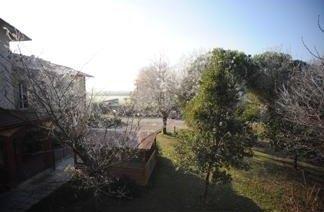 immagine di un giardino dall'alto