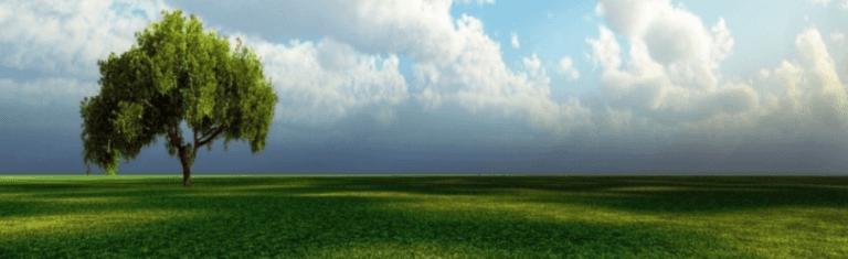Bonifica dei terreni inquinati, Viterbo