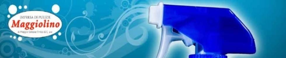 Impresa di pulizie Maggiolino
