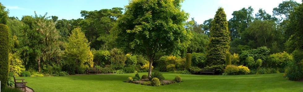 Servizi di giardinaggio Flora Giardini