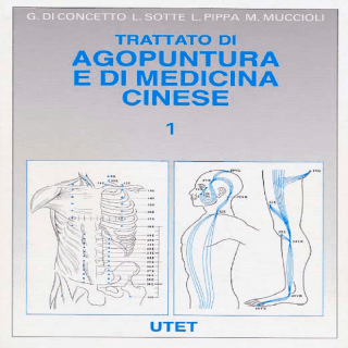 agopuntura e medicina cinese