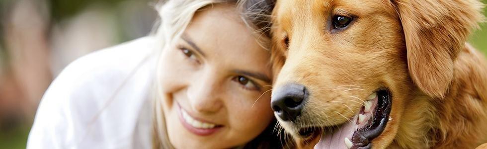 ingrosso mangimi cani
