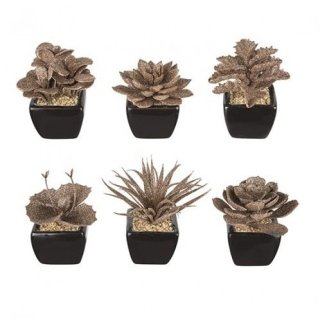 Frosted succulent sia home fashion