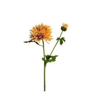 Steli di fiori
