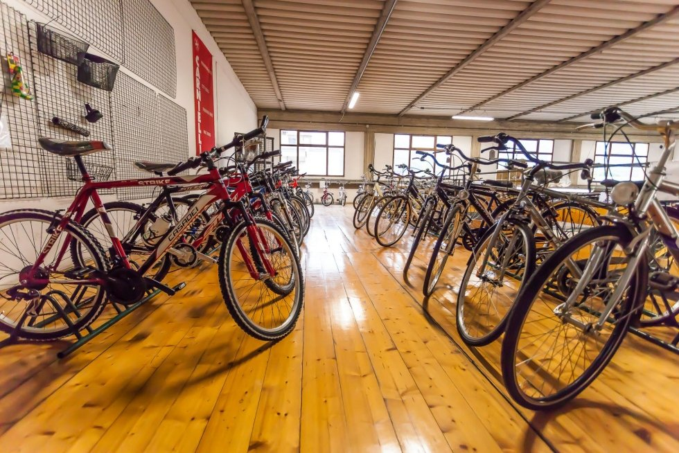 biciclette adulti