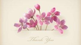 ringraziamenti, fiori per compleanni