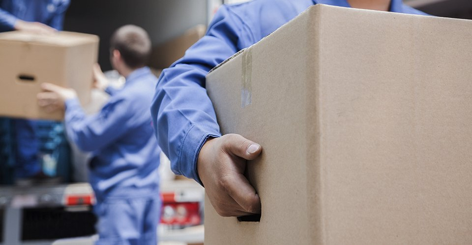 Removal and storage services