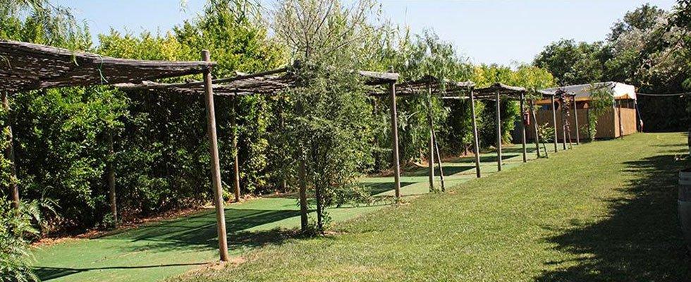 un prato con degli alberi e delle strutture di legno