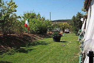 un prato con degli alberi e una bandiera italiana