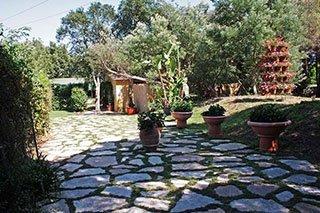 una stradina in pietra e dei vasi con delle piante