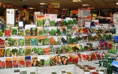 vendita semenze salerno