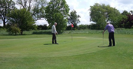 Two golfers on the putting green