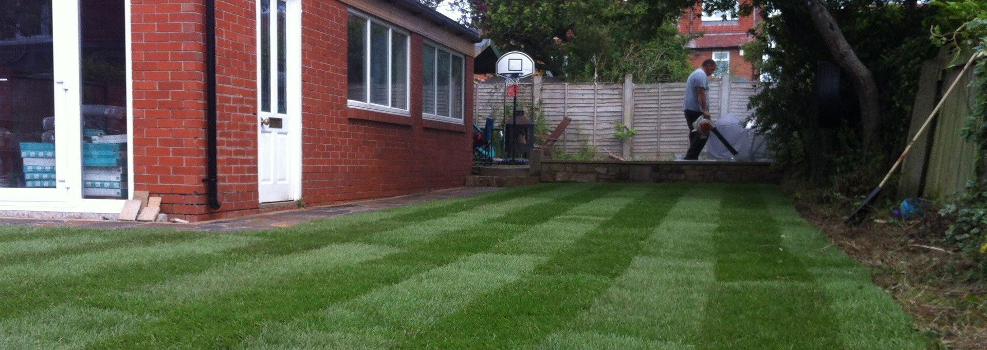 Garden maintenance and renovation