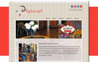 Chicago hair salon website design