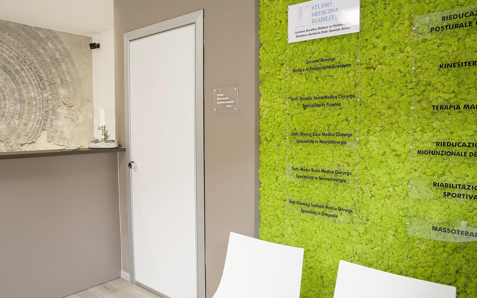 parete con le piante
