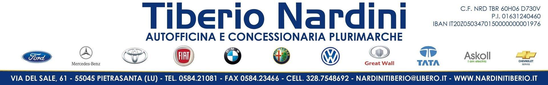 Tiberio Nardini - logo