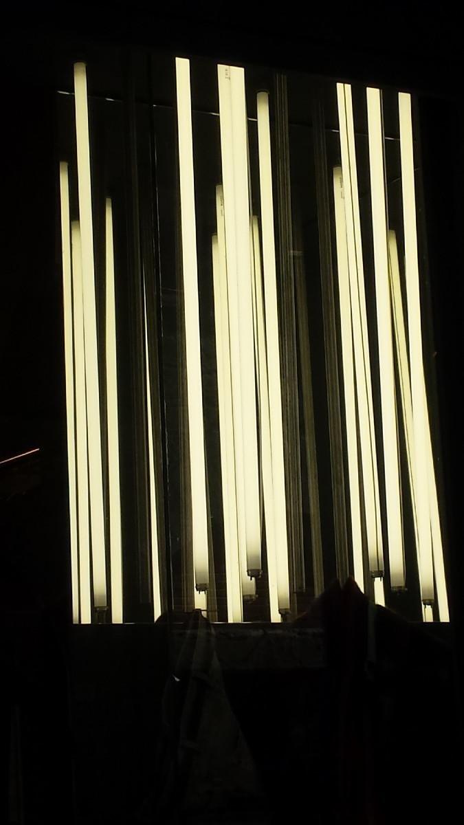 impianti neon arezzo