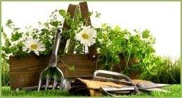 utensili per floricoltura