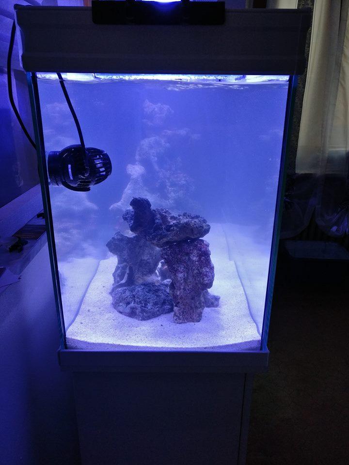 Sistema di manutenzione dell'acquario