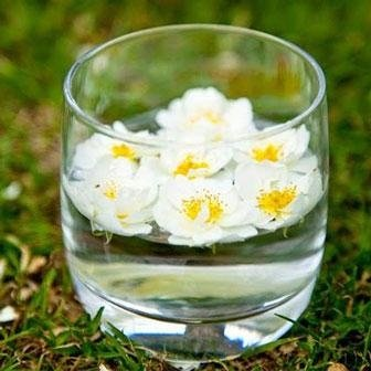 Consulenze floriterapiche verona