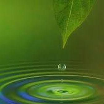 Consulenze naturopatiche verona