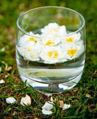 floriterapia verona
